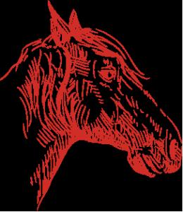 Almericinema_horse